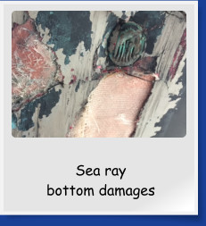 Sea ray  bottom damages